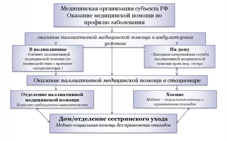 Модель системы оказания паллиативной помощи